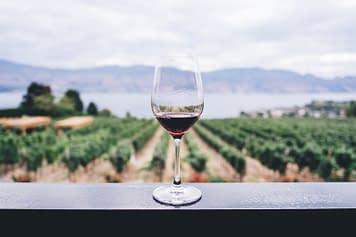 Un calice di pregiato vino